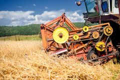 Process of harvesting with combine, gathering mature grain crops Royalty Free Stock Image