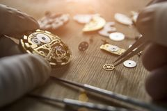 Process of installing a part on a mechanical watch, watch repair. Watchmaker is repairing the mechanical watches in his workshop, dismanted wristwatch stock images