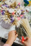 The process of making a bouquet. Colorful bouquet of different dried flowers deadwood flowers in the hands of florist. Colorful bouquet of different dried stock photos