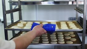 Process of making macaron, Cook puts trays of macarons stock video footage