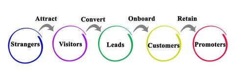Process of marketing vector illustration