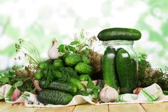 Process of preservation of fresh cucumbers in jars. For winter supplies royalty free stock photos