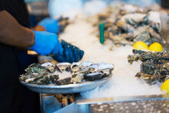 Process of shucking oysters Stock Photography