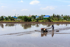 Process of Thai farmer working with a handheld motor plow in a rice field. Stock Photo