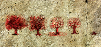 Process of the Tree Life in Five Stages. Stock Photos