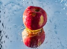 Washing one red apple with reflection and with splashes and drops of water. The process of washing one beautiful red apple with reflection and with splashes and Stock Images