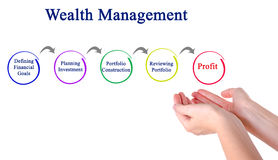 Process of Wealth Management. Presenting Process of Wealth Management Royalty Free Stock Photos