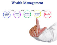 Process of Wealth Management. Presenting  Process of Wealth Management Royalty Free Stock Images