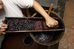 Process of wine making homemade winery with oak barrel and woode. N grater blue grape squeezing Royalty Free Stock Images