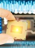 Processador central à disposicão Fotos de Stock