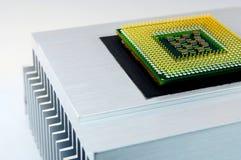 Processador central Imagem de Stock Royalty Free