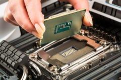 Processador e cartão-matriz modernos Fotografia de Stock