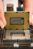 Processador e cartão-matriz modernos Imagem de Stock