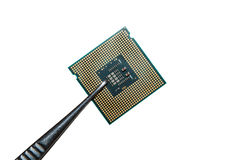 Processador na pinça imagens de stock royalty free