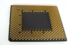 Processador visto dos pinos do ouro em um fundo branco Fotos de Stock