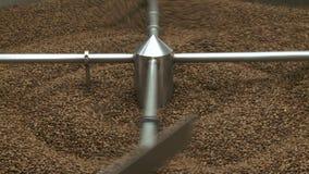 Processamento comercial do feijão de café video estoque