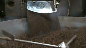 Processamento comercial do feijão de café vídeos de arquivo