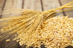 Processed Grains Royalty Free Stock Image