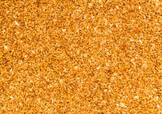 Processed organic wheat grains Stock Images