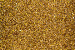 Processed organic wheat grains as agricultural background. royalty free stock images