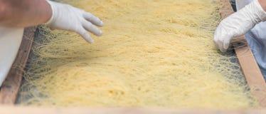 Processed pasta Royalty Free Stock Photos