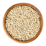 Processed pearl barley in wooden bowl over white Royalty Free Stock Photography
