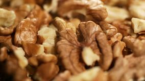 Processed walnuts stored in proper conditions, food product prepared for export. Stock footage stock footage