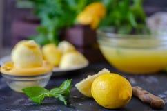 Processen av att göra lemonad hemma sund livstid för begrepp royaltyfria bilder