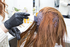 Processes coloring hair Royalty Free Stock Photography