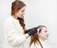 Processes coloring hair Royalty Free Stock Photo