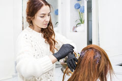 Processes coloring hair Royalty Free Stock Images