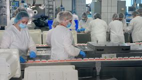 Processing of fresh crab sticks held by female technicians