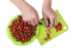 Processing with knife and hands of vitamin medicinal red berrie. S of forest dogroseberries. Removing of prickly seeds with a knife. Isolated top view studio stock photography
