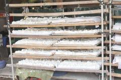 Processing Kudzu flour Royalty Free Stock Images