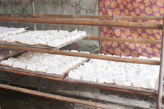 Processing Kudzu flour Stock Photography