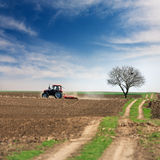 Processing of land with tractor Stock Photo