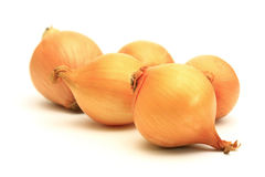 Procession of onions. On a white background Stock Photography