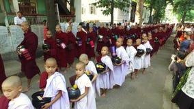 Processione del pasto del ` s del monaco nel Myanmar stock footage