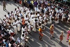 Processione di ballo della tigre fotografie stock libere da diritti