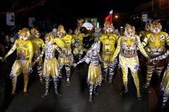 Processione di ballo della tigre immagine stock