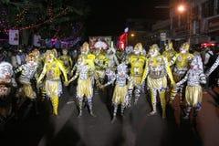 Processione di ballo della tigre fotografie stock