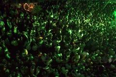 Processione di Ganpati fotografie stock