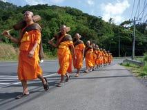 Processionen royaltyfri bild