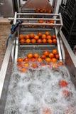 Processo arancio di pulizia fotografia stock libera da diritti