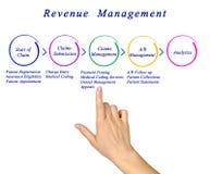Processo da gestão do rendimento foto de stock royalty free