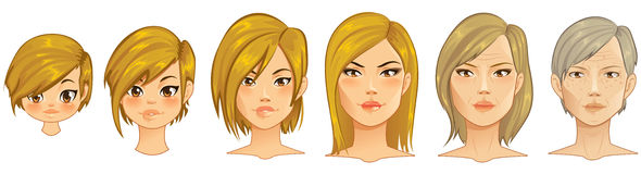 Processo da idade ilustração royalty free