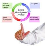 Processo de desenvolvimento do scrum Fotografia de Stock Royalty Free
