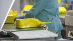 Processo de empacotamento do queijo Feche acima do queijo que processa na fábrica do alimento Processo de manufatura da fábrica d filme