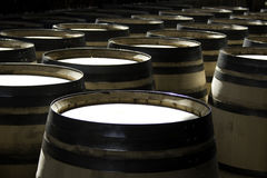 Processo de manufactura de tambores para o vinho Foto de Stock Royalty Free