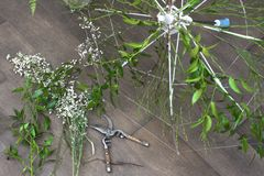 Processo de trabalho de criar alguma composição floral imagem de stock
